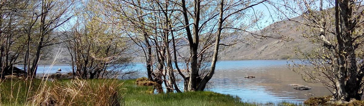 Lago de Sanabria, Atracción Natural